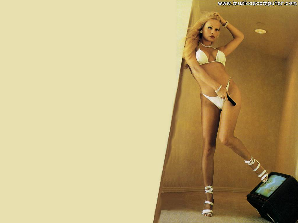 Desktop Wallpapers: Celebrities: Pamela Anderson - Pic 75 ( 90 Photos ... Pamela Anderson
