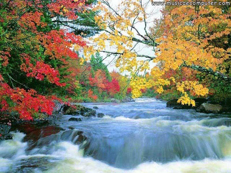 Sfondi per il desktop natura fiumi foto 4 94 foto for Immagini desktop natura
